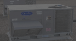 carrier_bgd